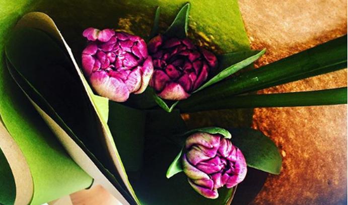 23-fev-2017-laboratoire-larima-lyne-ste-marie-instagram