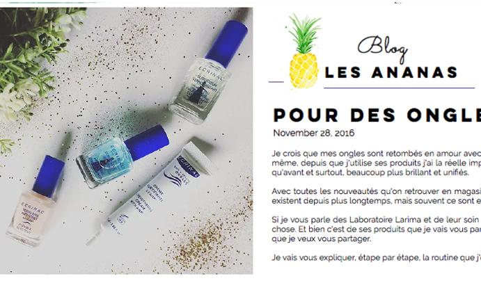 28 Nov 2016 Blog Les Ananas Ecrinal Ongles