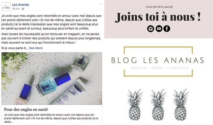 28 nov 2016 Les Ananas Facebook